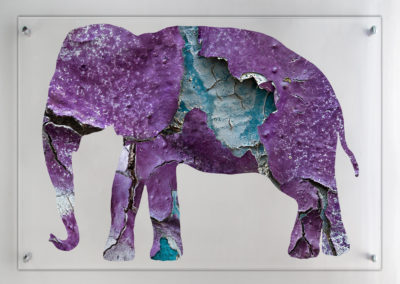 L'Elefante 2009