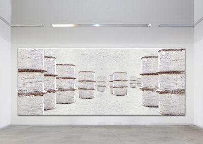 Bidoni Bianchi - Galleria 2010